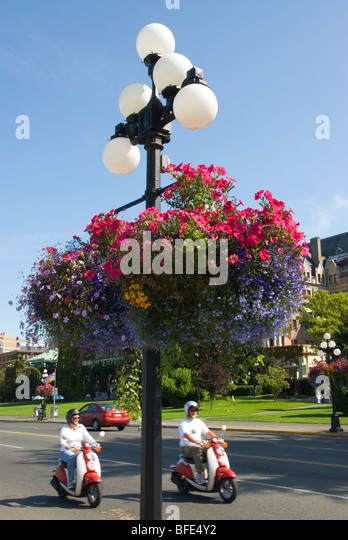 Hanging Flower Baskets Vancouver Wa : Street lamp hanging flowers in stock photos