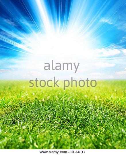 vivid sunlight - Stock Image
