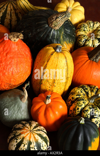 Assortment of mixed squash. - Stock Image