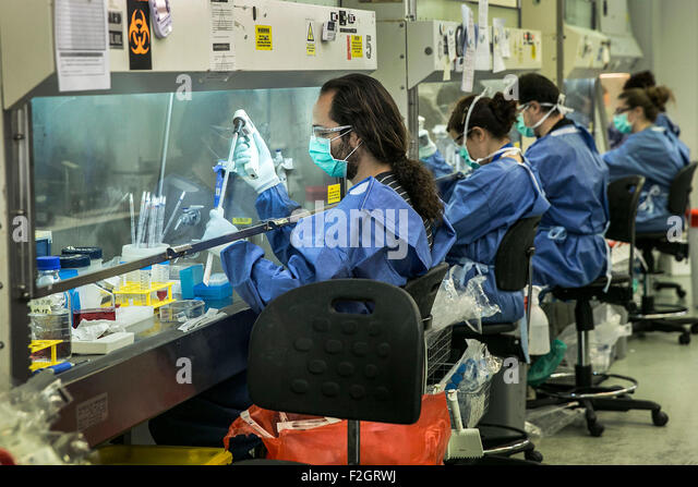 Workers and researchers meet at the clinical analysis area in a hospital in Mallorca. - Stock Image