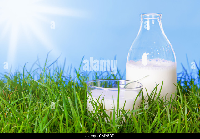 Photo of a glass and bottle of fresh milk in a grass field on a summers day. - Stock Image
