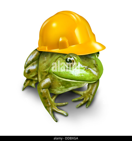 Responsible development environmental concept with a green frog wearing a yellow construction hard hat as a symbol - Stock Image