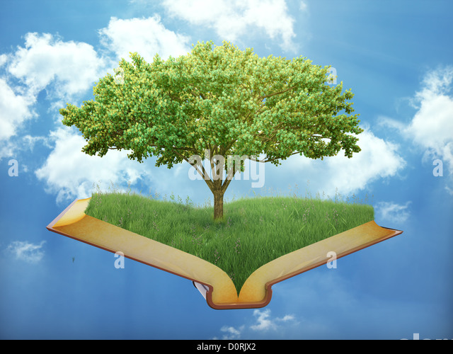 The tree of knowledge - Stock Image