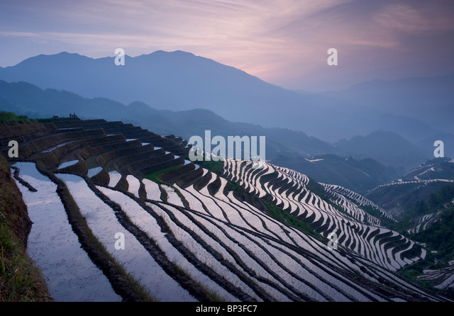 sunset at Dragon's Backbone Rice Terraces near Yao Village of Dazhai, Guangxi Province China, - Stock Image