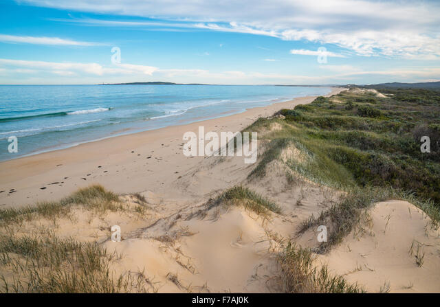 Spectacular sand dunes along the Nadgee Wilderness walk, New South Wales Victoria border. - Stock Image