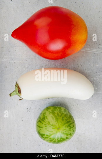Tomato varieties with white eggplant - Stock Image