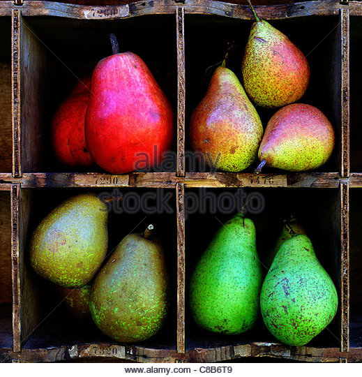 Selection of pears - Stock Image