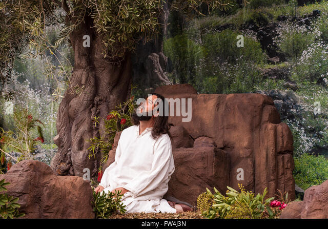 Jesus in the garden of Gethsamene, Passion play, Adeje, Tenerife, Canary Islands, Spain. Representacion de la Pasion. - Stock Image
