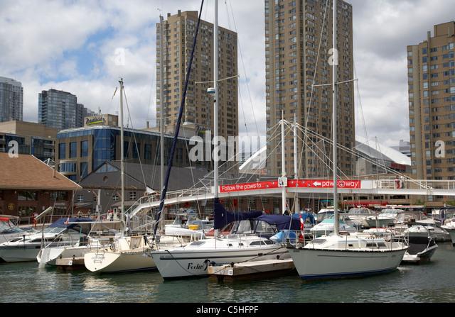 Toronto Islands Pedal Boat