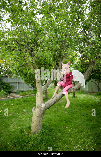 Pigs might fly. Girl in pig mask with wings. - Stock-Bilder