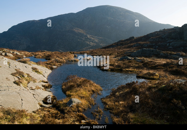 Y Llethr from Rhinog Fach, Rhinog Mountains, Snowdonia, North Wales, UK - Stock Image
