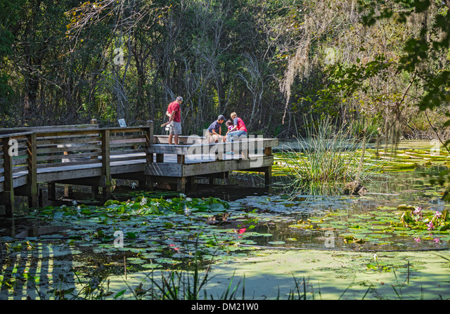 Gainesville stock photos gainesville stock images alamy - Botanical gardens gainesville fl ...