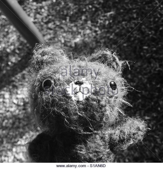 Teddy bear at Park - Stock-Bilder