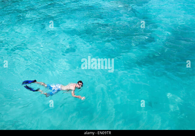 snorkeling, top view of man swimming with fins and mask, copy space - Stock Image