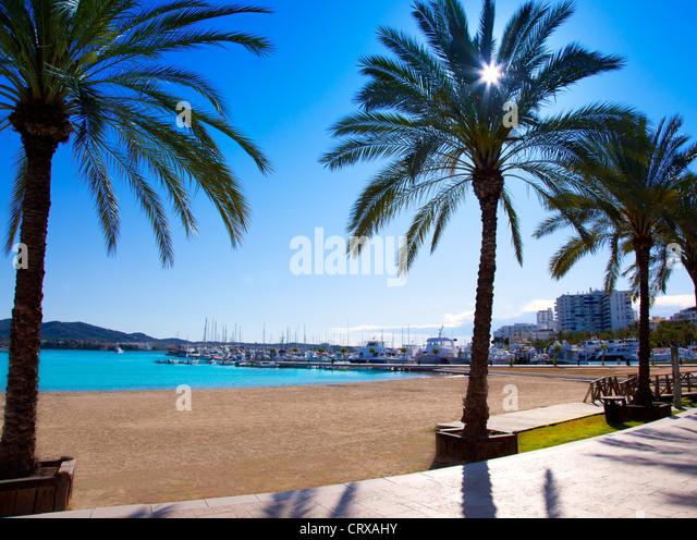 Ibiza Sant antoni de Portmany Abad beach with palm trees - Stock Image