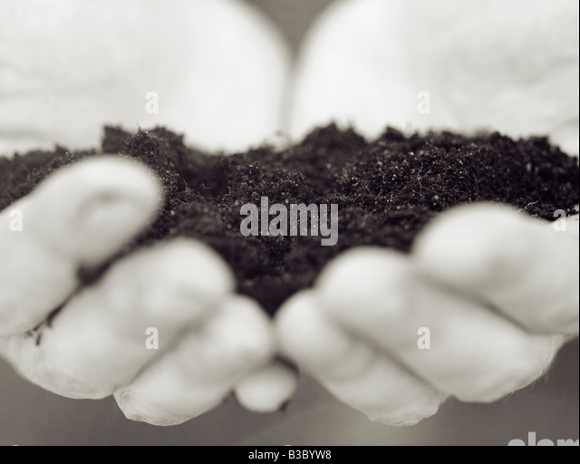 Hands filled with soil - Stock Image