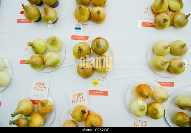 Onions on display at Dundee Flower and Food Festival. - Stock Image
