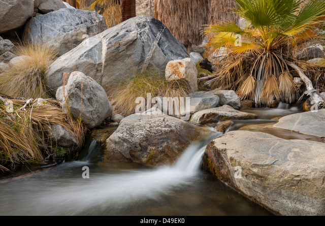 Creek in Andreas Canyon, one of the Indian Canyons on the Agua Caliente Indian Reservation near Palm Springs, California. - Stock Image