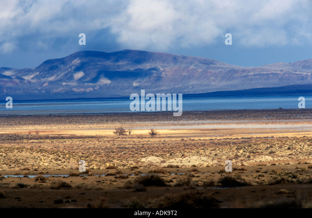 Lone trees and storm Black Rock Desert National Conservation Area Nevada - Stock Image