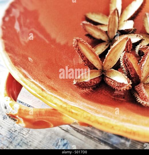 Large open star-shaped seed pods in orange dish on dark wooden table, close-up - Stock-Bilder