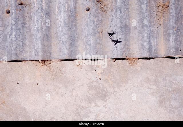 Metal and Concrete - Stock-Bilder