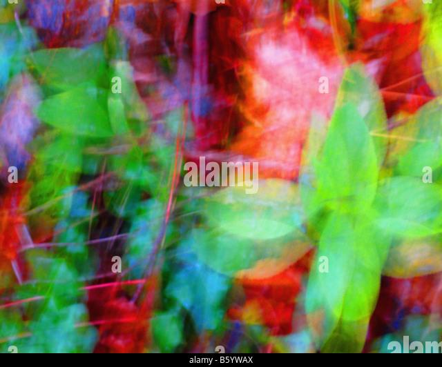 DIGITAL ART: Autumn Colours - Stock Image
