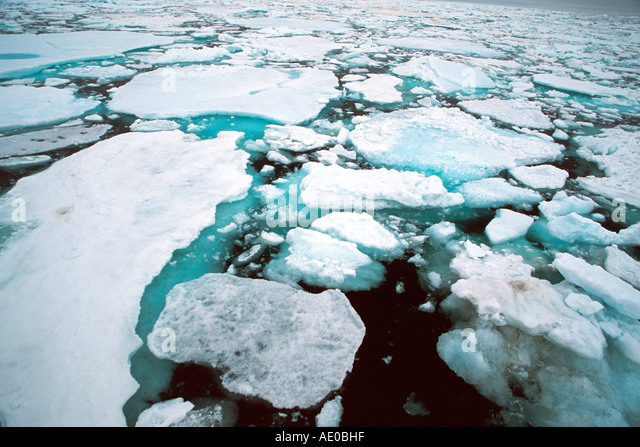 drift ice pack ice ice field actic ocean Treibeis Packeis Eisfeld Arktis Ozean Svalbard Spitzbergen Norway - Stock Image