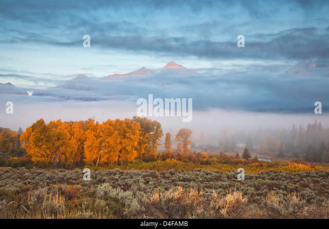 Mist over rural landscape - Stock Image
