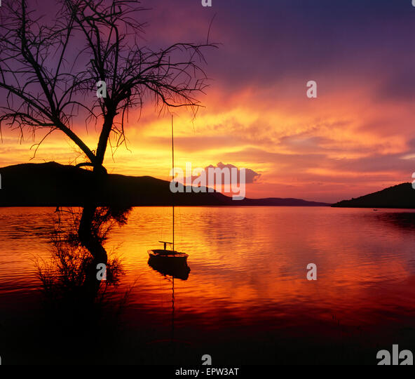 Sunset landscape. Three and sailboat in sunset at sea. - Stock Image