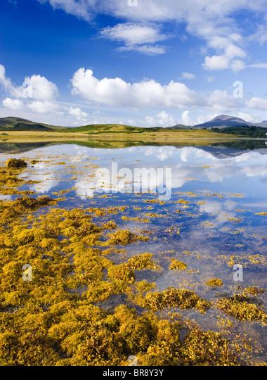 Loch Don, Lochdon, Isle of Mull, Argyll, Scotland, UK. - Stock-Bilder