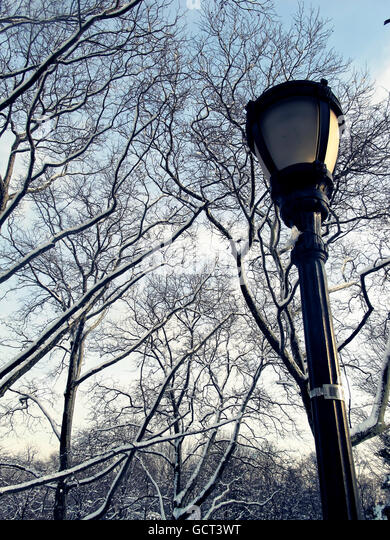 Old fashioned metal and glass street lamp with snowy bare trees in the background. - Stock Image