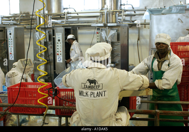 Zambeef Milk and butter processing plant in Lusaka Zambia - Stock Image