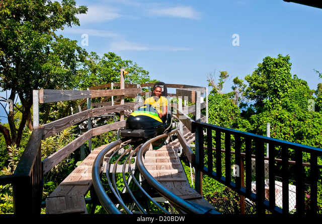 Jamaican man on rainforest bobsled ride at the Mystic Mountain tourist attraction, Ocho Rios Jamaica - Stock Image