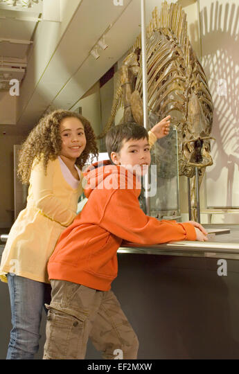 Young students in museum by dinosaur fossil display - Stock Image