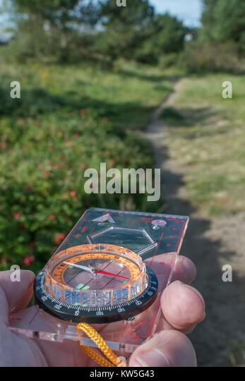 Orienteering compass - metaphor for business 'direction', navigation, moral compass, getting your bearings - Stock Image