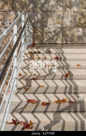 Fallen maple leaves on the steps at the J. Paul Getty Museum in Los Angeles, CA. - Stock Image