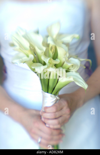 bride-holding-a-bouquet-of-flowers-ad82k