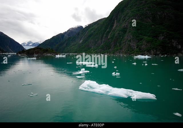 Global warming, Tracy Arm Fords Terror Wilderness Alaska Pacific Ocean - Stock Image