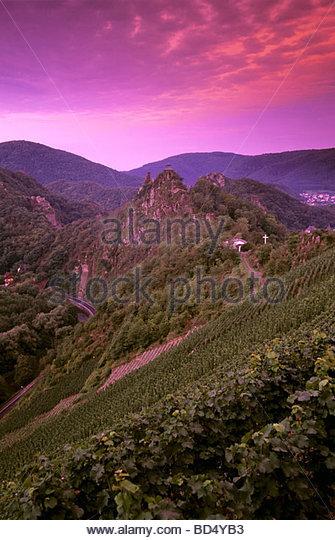 'Altenahrer Eck' Einzellage (single vineyard), Ahr, Germany - Stock Image