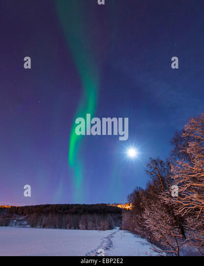 aurora and moon above winter scenery, Norway, Troms, Tromsoe - Stock Image