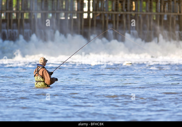 Man Fly Fishing in the Red River.  Lockport, Manitoba, Canada. - Stock Image