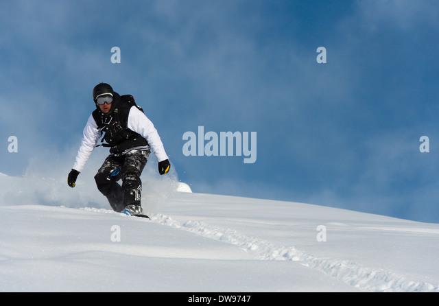 Freerider on a snowboard, St. Moritz, Engadin, Graubünden, Switzerland - Stock Image