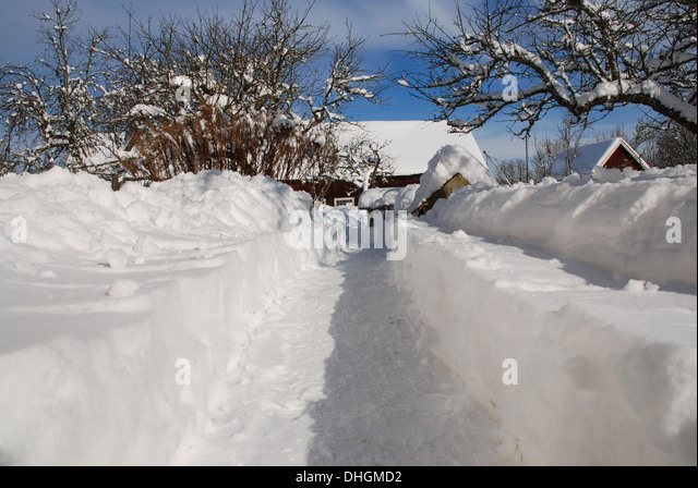 Snow trail in a garden - Stock Image
