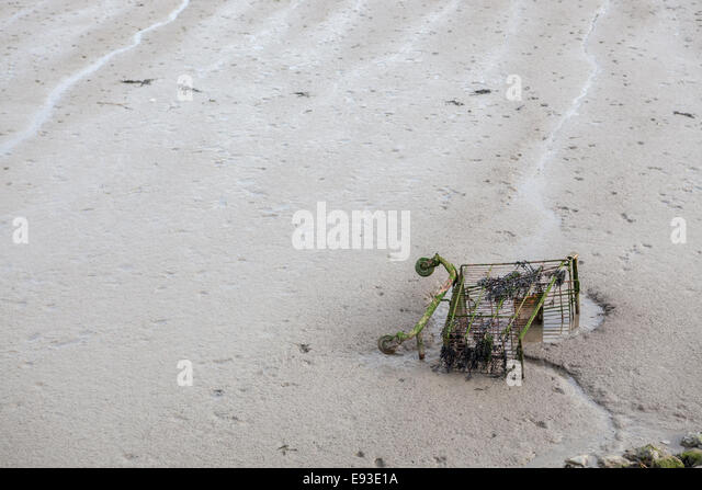 Shopping trolley on the foreshore of the River Thames at Grays in Essex - Stock Image