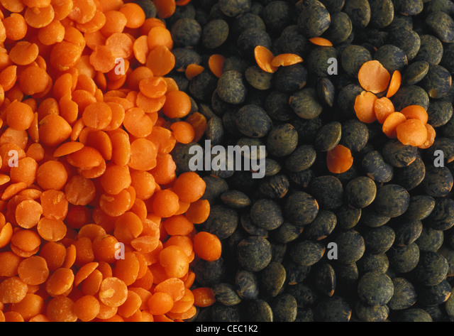 Dry lentils, close-up - Stock Image