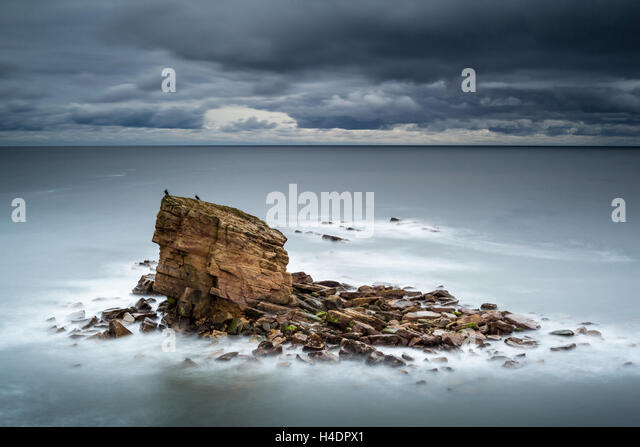 Lone sea stack at Charlie's Garden, Northumberland, after sun set and with the North Sea at high tide with a - Stock Image