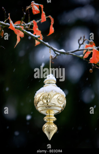 Christmas tree ornament in snow covered tree. - Stock Image