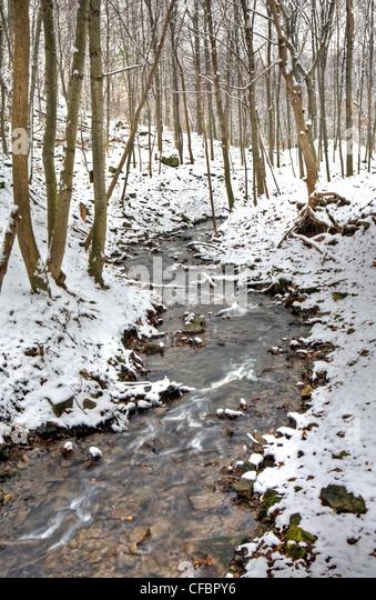 Ancaster Creek in winter, Bruce Trail, Niagara Escarpment, Hamilton, Ontario, Canada - Stock Image