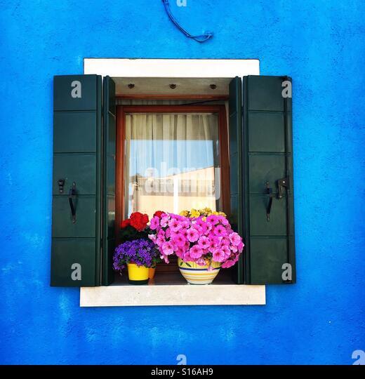 Flowers - Stock-Bilder