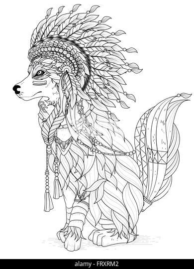 Shoshone Native American Symbols